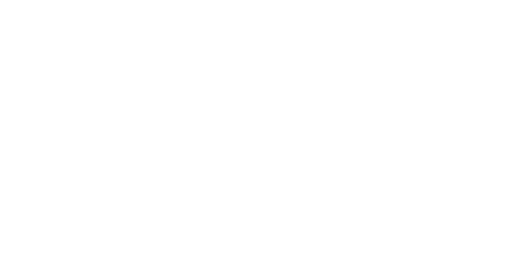 Группа компаний Русский пир